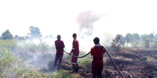Kebakaran lahan di Sumsel. Foto BPBD