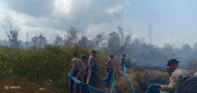 Petugas memadamkan kebakaran lahan gambut di Mesuji Timur, Selasa (13/8/2019) siang. Foto Istimewa for radarcom.id
