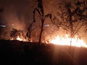 Kebakaran lahan di belakang Begadang Resto, Telukbetung Utara, Kamis (29/8/2019). Foto BPBD Bandar Lampung for radarcom.id