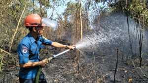 Petugas Damkar saat Memadamkan Api di Lahan Terbakar di Kota Agung Timur, Kamis (12/9/19). Foto Humas Polres Tanggamus for radarcom.id