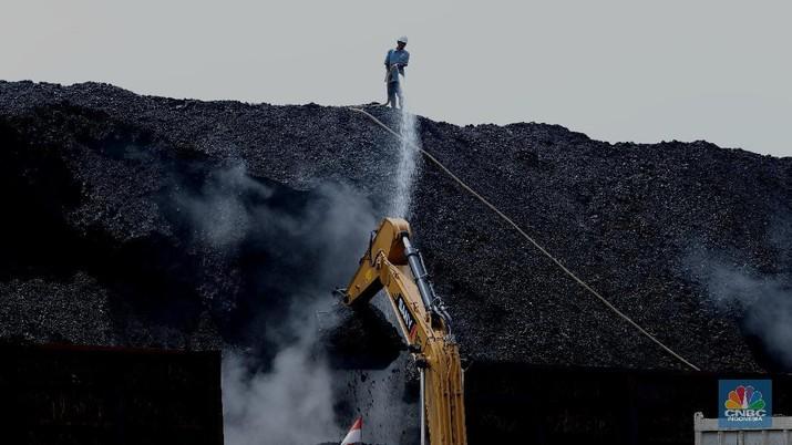 Bongkar Muat Batu bara di Terminal Tanjung Priok TO 1, Jakarta Utara. (CNBC Indonesia/ Tri Susilo)